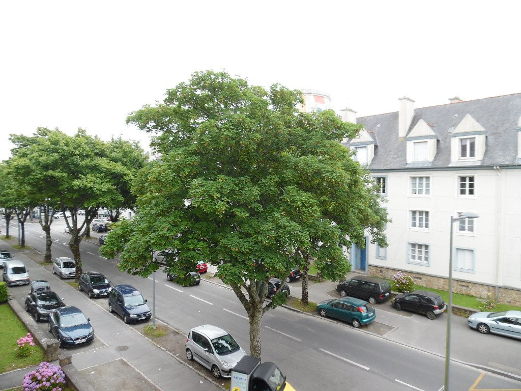 A VENDRE  BREST  STRASBOURG  APPARTEMENT T4  80M²   2 CHAMBRES   CHARME ANNEE 50  GARAGE FERME